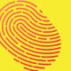 495-digital-branding